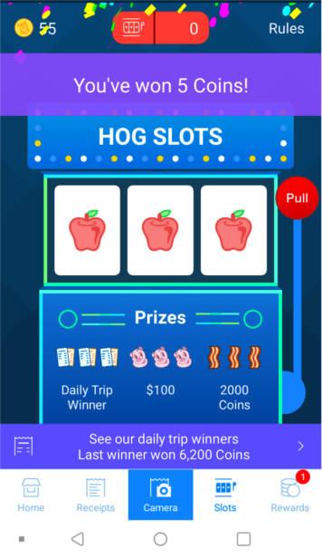 Screenshot of Receipt Hog's slots game.